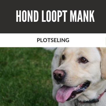 Loopt je Hond Plotseling Mank?