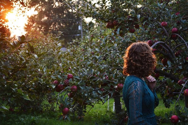 waarom appelboom snoeien