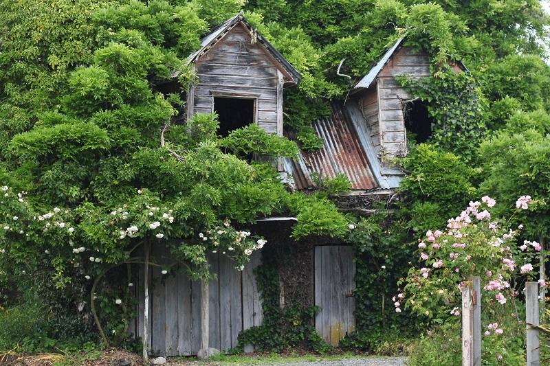 goedkoop tuin opknappen