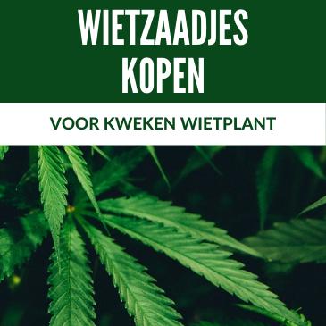 Wietzaadjes kopen voor het kweken van een wietplant